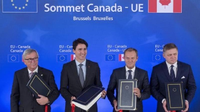 images/galleries/ceta-firma.jpg